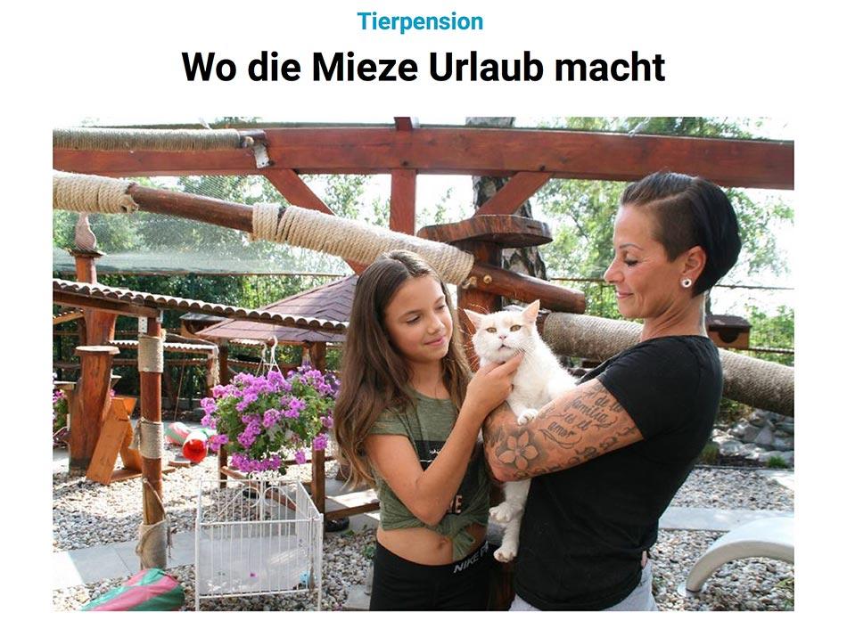 Presseartikel Märkische Oderzeitung