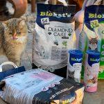BioKats Katzenstreu