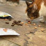 GimCat Snacks