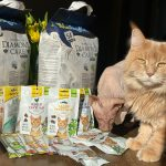 GimCat und BioKats Sortiment